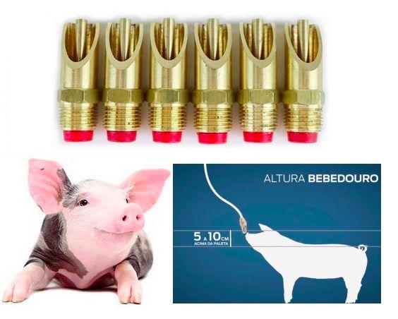 6 Bebedouro Suino Porco Pequeno Inf.  Chpeta Mordida  Zatti