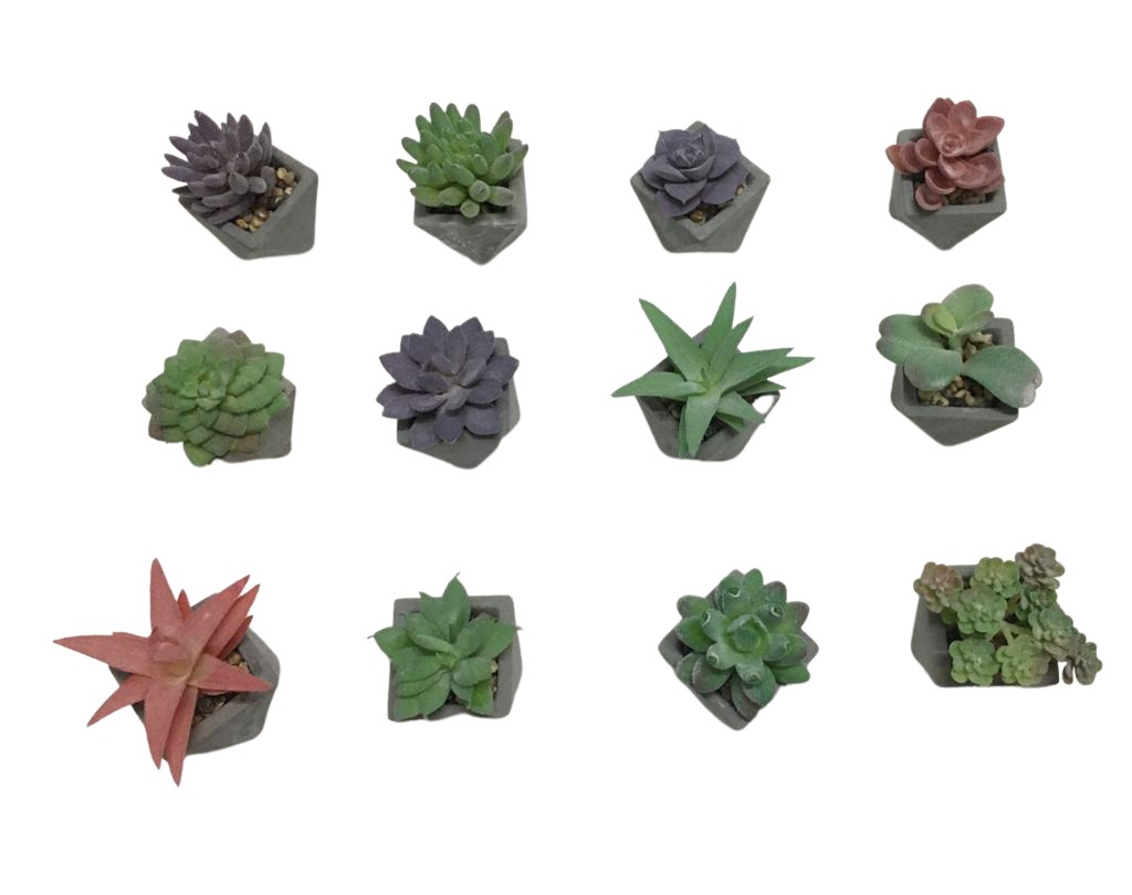 Arranjo Flor Artificial Suculenta 5cm Vaso Cimen Mix c/ 12