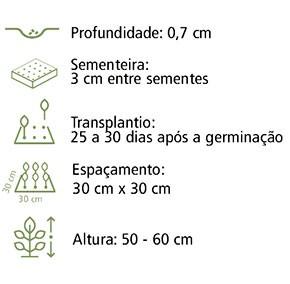 Sementes Balsamina Camélia 20Env 500mg - Topseed
