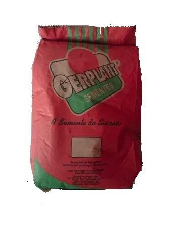 Sementes Capim Brachiarão Marandu (Brizantha) 10 kg Gerplant