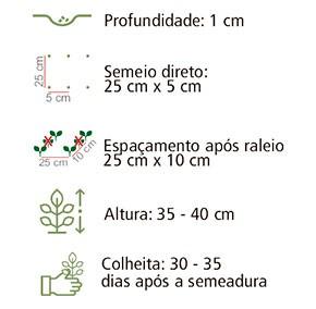 Sementes Coentro Português 20Env 1,6g - Topseed