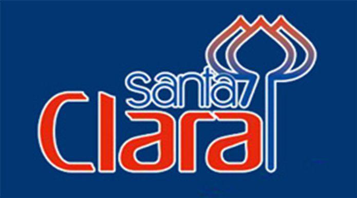 Pente Plástico Especial 01 Unidade - Santa Clara