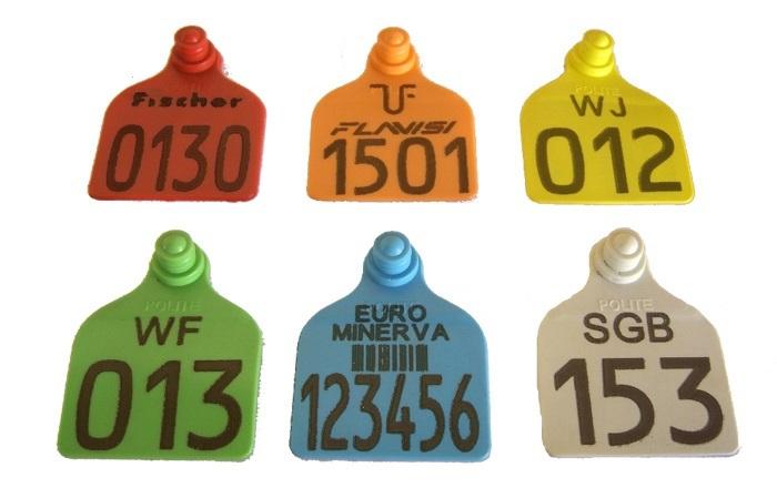 Brinco Grande Identificador Personalizado (Nome, logomarca, desenho) SEM pino macho (SOMENTE O BRINCO)