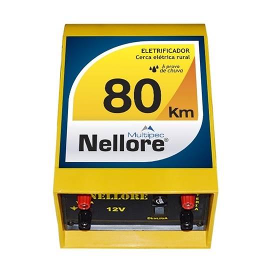 Eletrificador NELLORE para rede elétrica 80 km 12v
