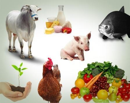 Produtos Agropecuários Sob Encomenda