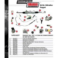 Kit De Direção Hidráulica Do Peugeot 206 / 207 1.4 Ano 2009 Em Diante (Modelos Com Ar Condicionado)