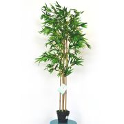 Bambu Artificial de 1,6m de Altura 988 Folhas DESIGN PLANTAS