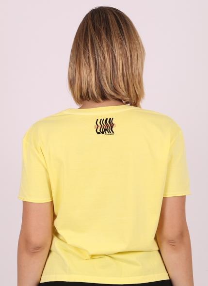Camiseta Box Feminina Luan Santana Meteoro da Paixão