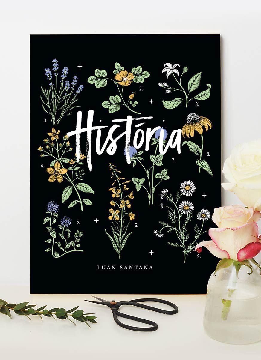 Quadro Luan Santana Live História Flores