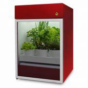 Plantário ONE Vermelho