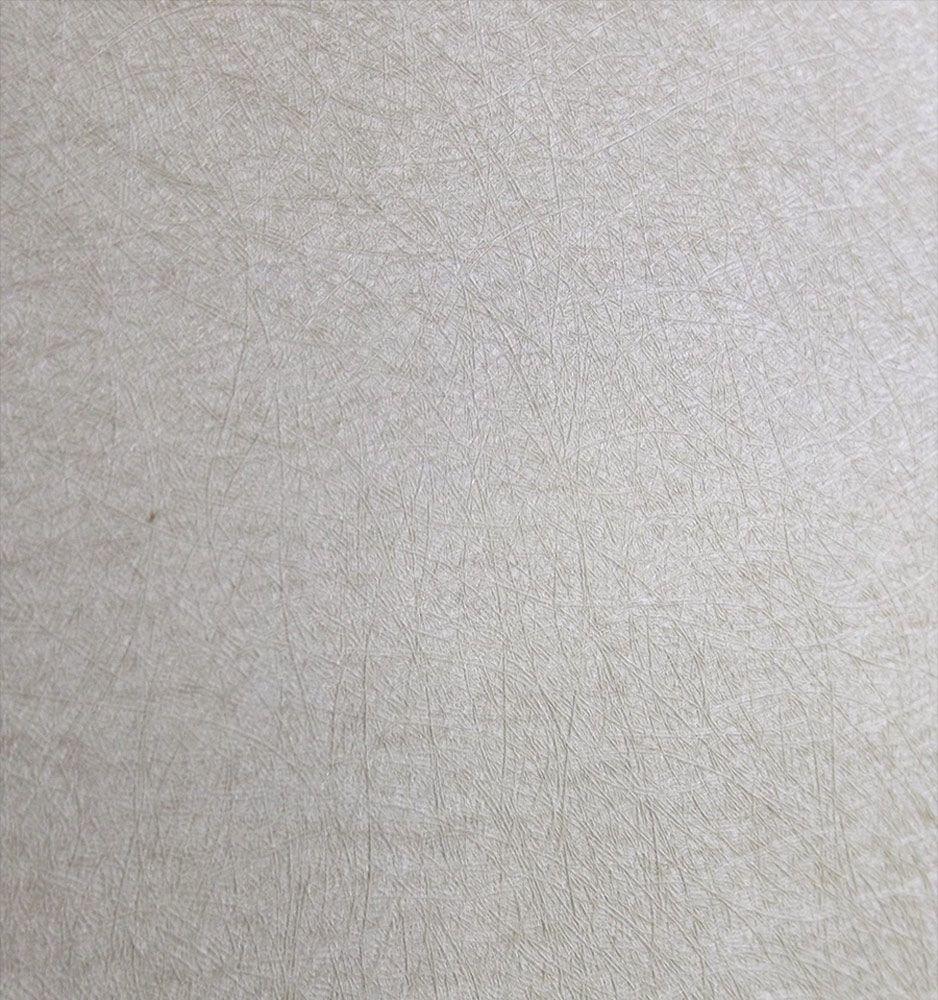 Papel de Parede Bege Amendoa SB3110308