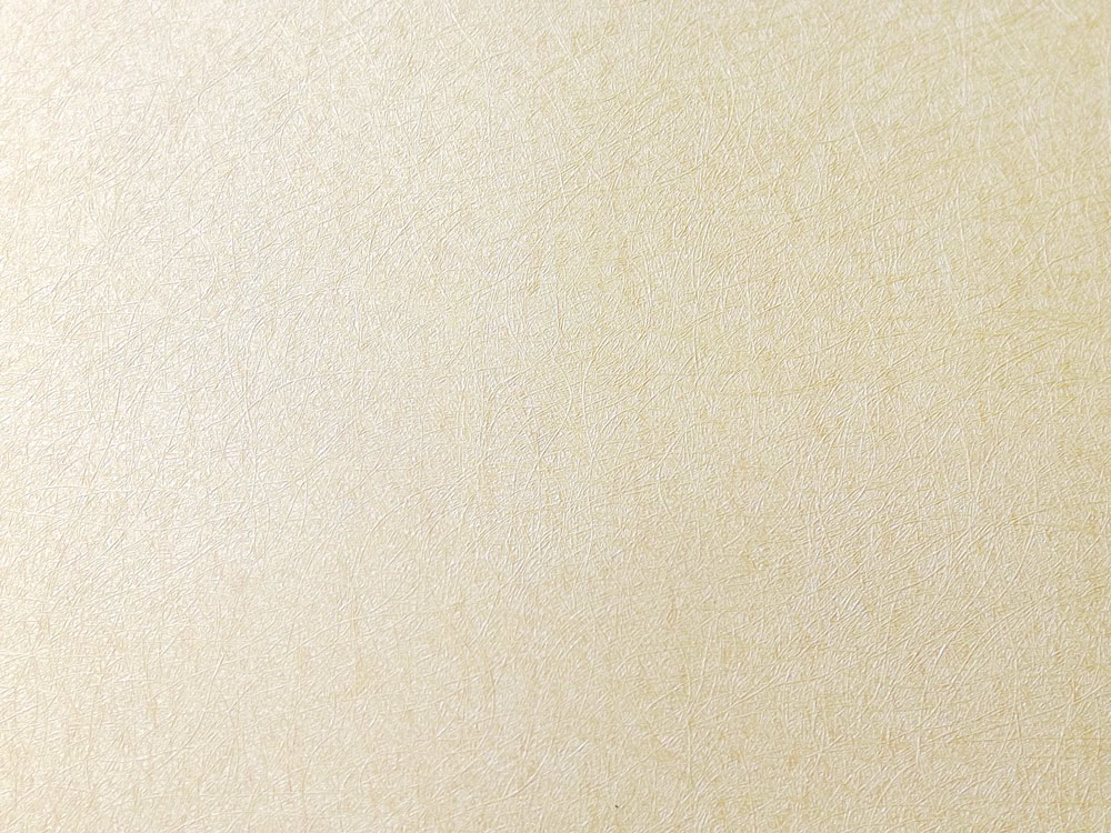 Papel de Parede Creme SB2810310