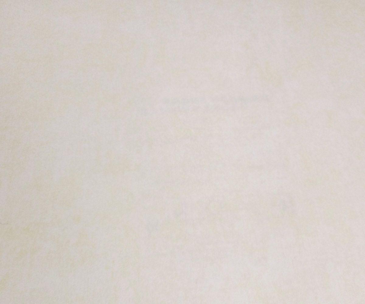 Papel de Parede Infantil Creme Suave RS09f55001