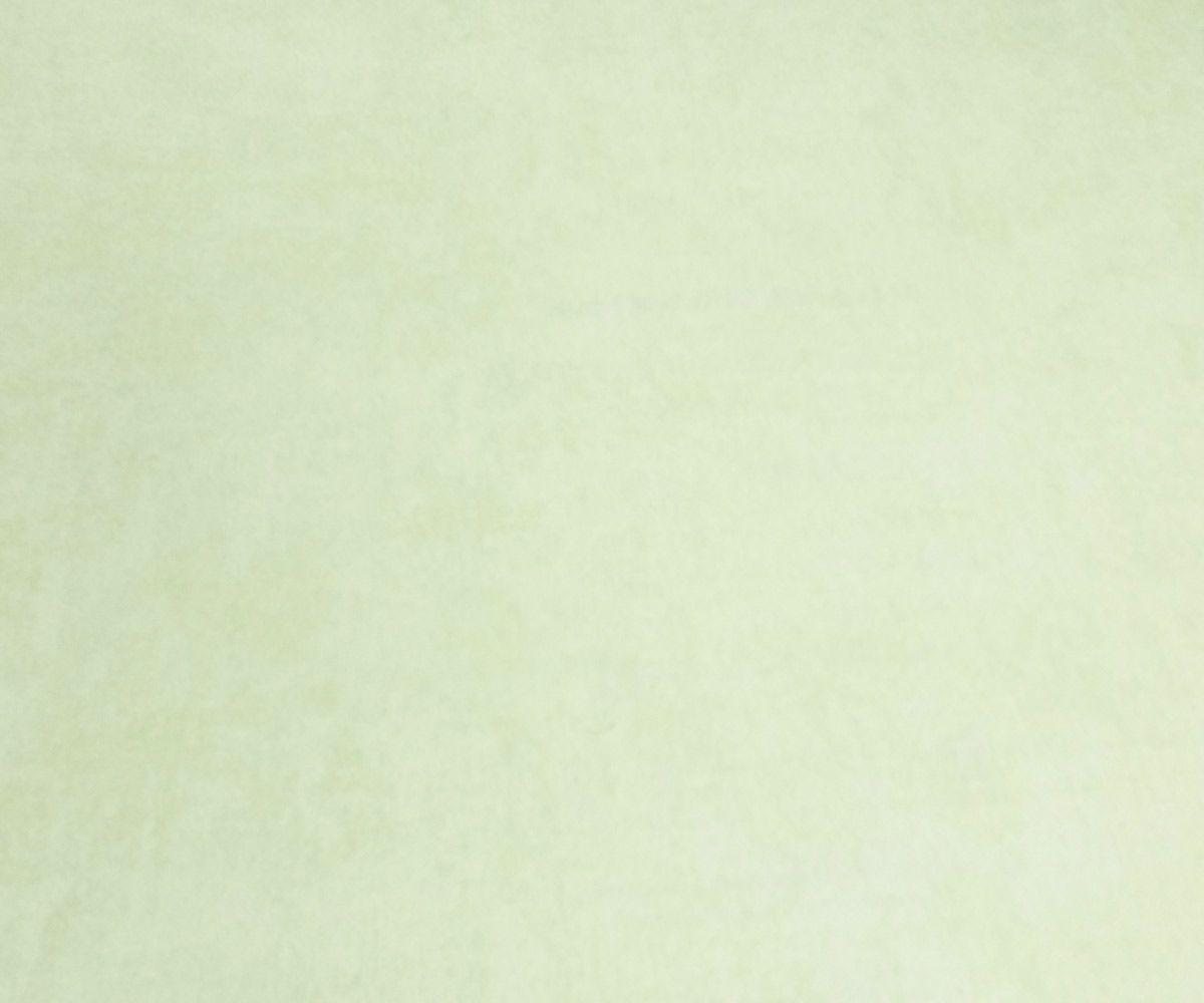 Papel de Parede Infantil Verde Suave Rs06f55003