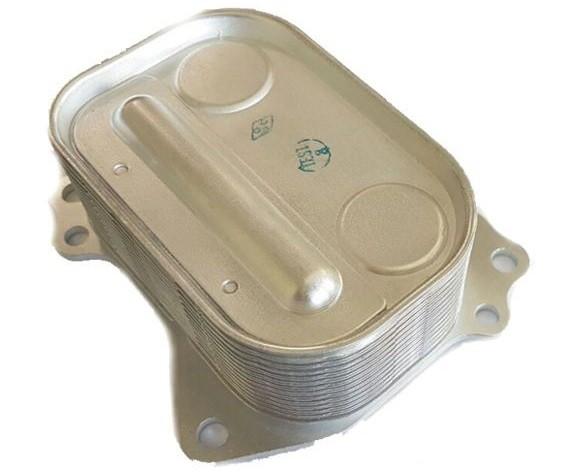 Radiador Resfriador de Oleo Motor Bmw 320i 116i 118i 2011 a 2017 - 5989070066