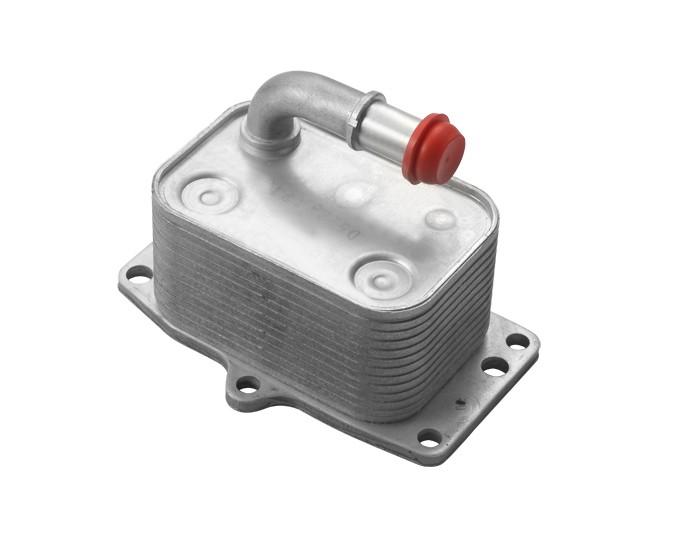 Resfriador Trocador de Calor Motor Peugeot 307 308 Citroen C4 2.0 16V ? 2007 a 2017