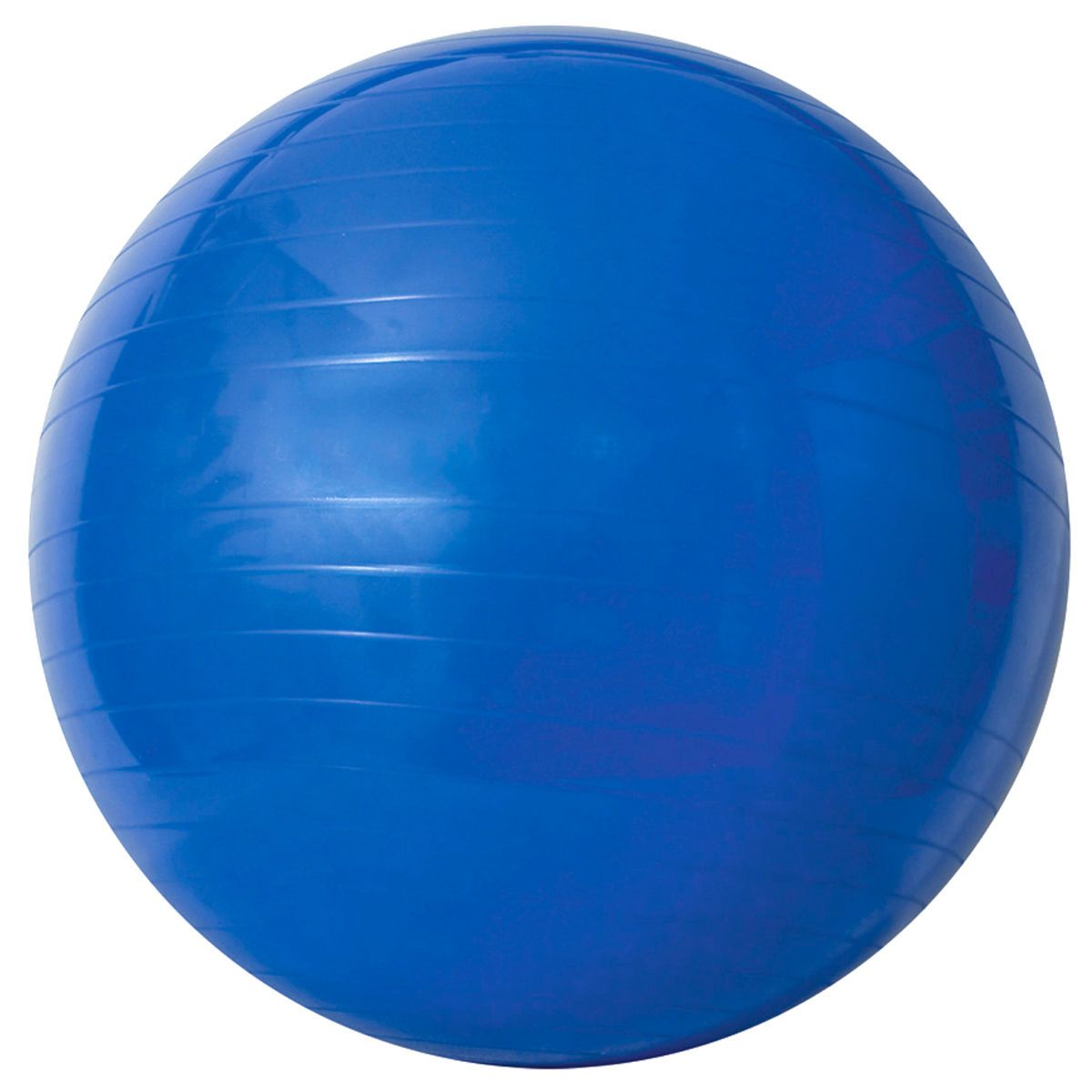 Bola de Massagem Gym Ball com Bomba de Ar até 300Kg  - Acte Sports