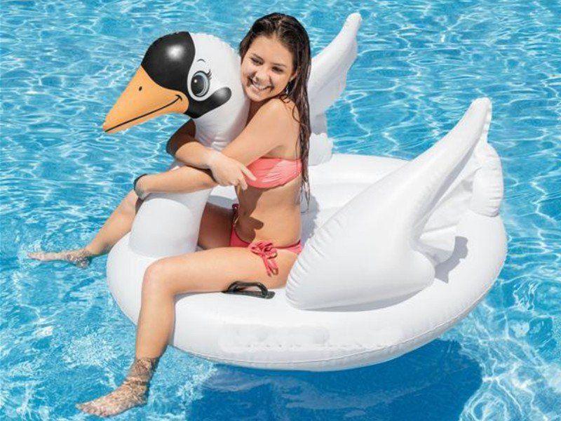 Kit Bóia Inflável Fashion Cisne Intex + Flamingo Bestway