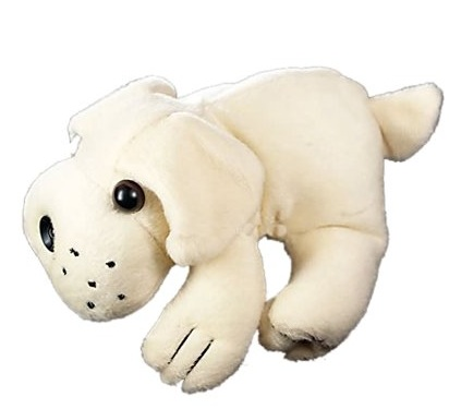 Webcam Dog Branco 1.3MP C/ Infra