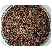 Sementes Crotalária Spectabilis - Caixa com 3 kg