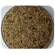 Sementes Brachiária Ruziziensis - Caixa com 2 kg (72%VC)
