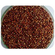 Sementes de Sorgo AL PRECIOSO (GRÃO/SILAGEM) - Caixa com 2 kg