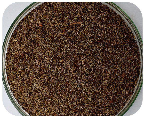 Sementes Mombaça - Saco com 10 kg - (32%VC)