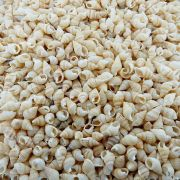 Concha Natural - 12mm - 250g