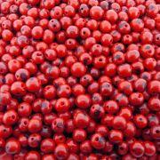 Entremeio Conta de Semente Natural - Açaí - Vermelho - 8mm - 1000pçs