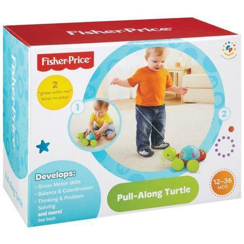 Empurra Tartaruga Fisher Price Mattel Y8652