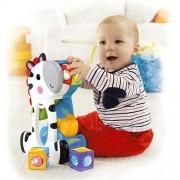 Fisher Price - Zebra Blocos Surpresa Mattel CGN63