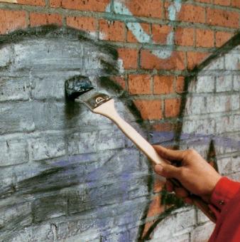 Graffiti Remover 1L - Dupox Akemi  - COLAR