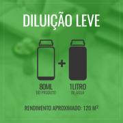 Detergente Limpa Porcelanato Dia a Dia 1 Litro - Bellinzoni ♥ Home Care  - COLAR