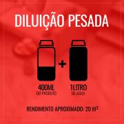 Detergente Limpa Pedras de Piscinas 1 Litro - Bellinzoni ♥ Home Care  - COLAR