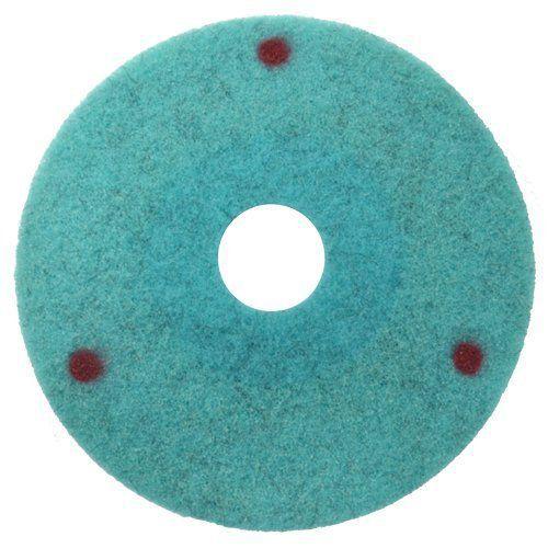 Disco de Limpeza e Manutenção -  Colar   - COLAR