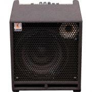 Eden TN2251 Amplificador Combo para Contrabaixo com 225w de Potência