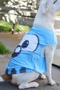 Camiseta Para Cães e Gatos Olhões Bidu