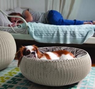 Cama Cozy Pet Com Almofada Knit Curver Sandy Keter