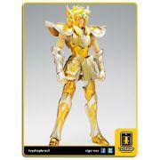 Cavaleiros do Zodíaco Hyoga de Aquário EX cloth Myth Bandai