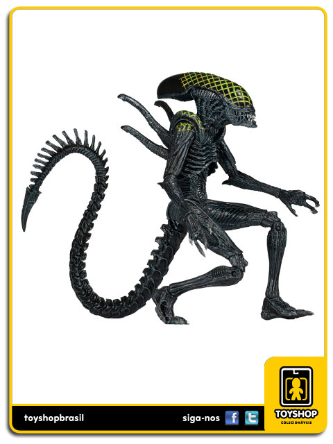 AVP Alien Vs  Predator: Grid Alien - Neca