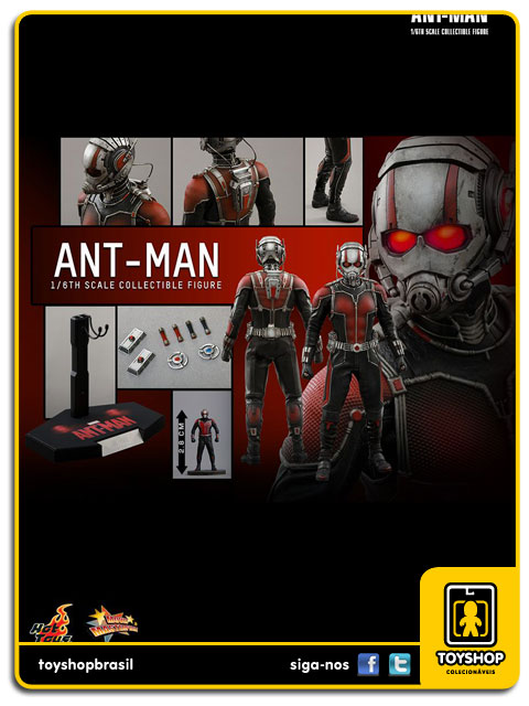 Ant-Man: Ant-Man 1/6 - Hot Toys