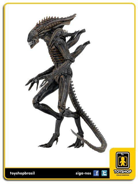 Aliens Series 11  Defiance Alien Xenomorph Neca
