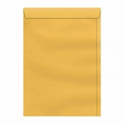 Envelope Scrity Saco Ouro 229X324Mm 80Gr Com 10 Un Sko132 05699