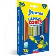 Lápis de Cor Norma 36 Cores Triangular 934863 16055