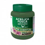 Tinta Acrilica Acrilex Fosca 250ml Verde Musgo 513 03525 25282