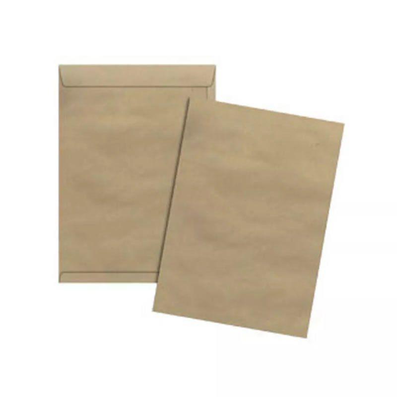 Envelope Scrity Saco Kraft Kn25S 176X250Mm 80Gr Com 10 Un Skn125 05701