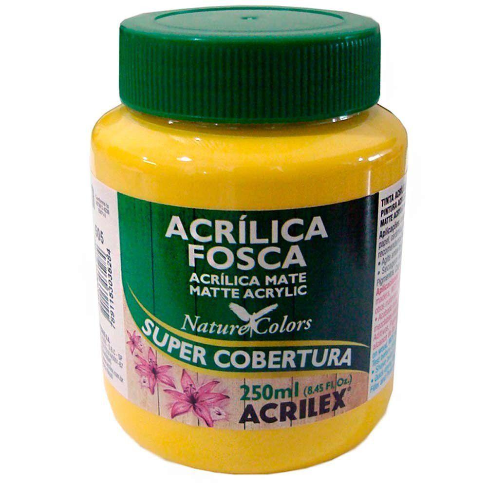 Tinta Acrilica Acrilex Fosca 250ml Ouro 505 03525 25279