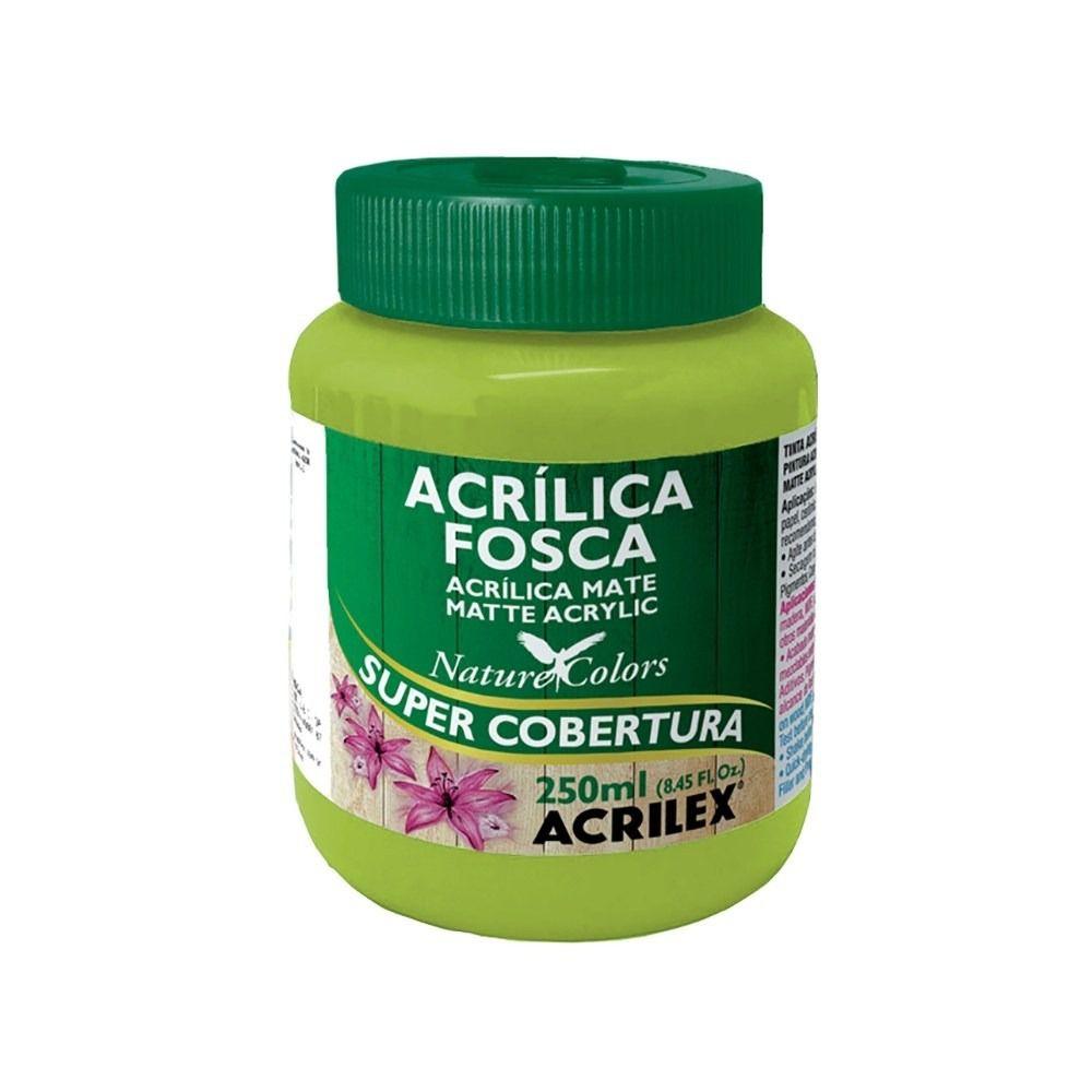 Tinta Acrilica Acrilex Fosca 250ml Verde Folha 510 03525 25281