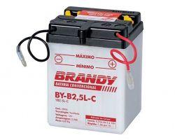 Bateria com Solução Brandy - BY-B2.5L-C - Biz Today Turuna