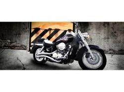Escapamento Shadow 750 JJ Classic Carburada Cromo Cobra